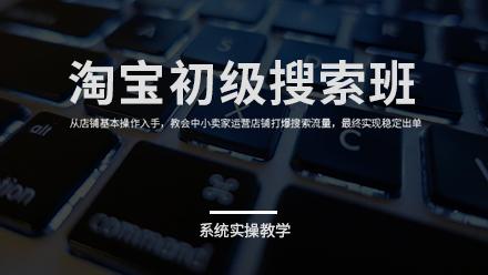 【爆】2020年淘宝零基础学习淘宝SEO运营实战