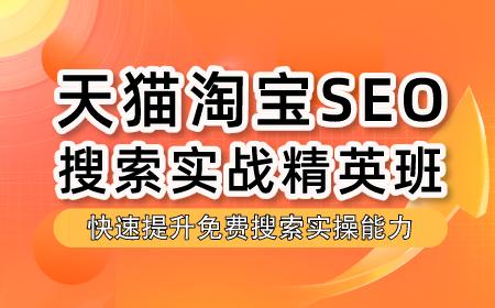 【推荐】2021天猫淘宝SEO搜索实战精英班