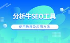 分析牛SEO工具使用教程及應用方法